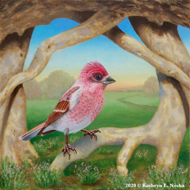 Purple Finch: Simple Joys 6x6 $300 |At my Online Store