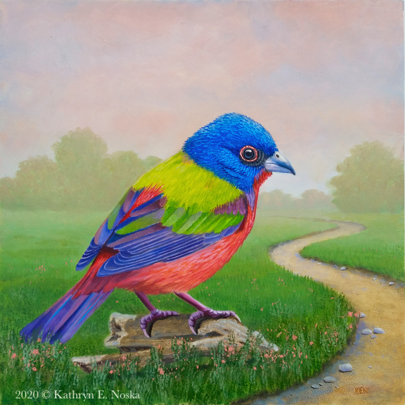 Painted Bunting: Colorful Life 6x6 $300 | At my Online Store